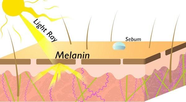 beautiful skin refraction